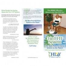 3-in-1-FIT-Detox-Brochure SM