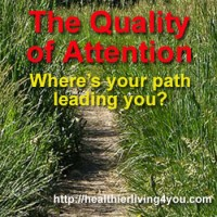 The Quality of Attention – Where's your path leading you?